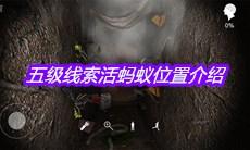 孙美琪疑案12五级线索活蚂蚁在哪-五级线索活蚂蚁位置介绍
